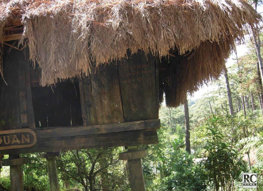 巢於木巔的伊戈洛特木屋已被列入古蹟